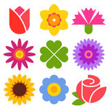 Colorful flower set Royalty Free Stock Images