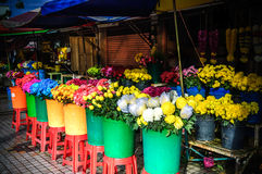 Colorful Flower Stall Bathed In Early Morning Sunshine Royalty Free Stock Photo