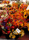 A colorful flower stall. Stock Photography
