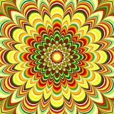 Colorful flower striped mandala Stock Images