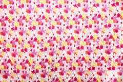 Colorful Flower Texture Stock Photography