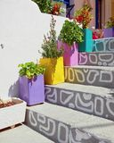 Colorful flower tins on stairs,  Greece Stock Photos