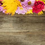 Colorful flower top border on wood Stock Photos