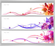 Colorful flower vector. Background brochure template Royalty Free Stock Photos