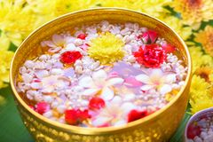 Colorful flower in water bowls decorating on Banana leaf for Songkran Festival or Thai New Year.  Stock Photo