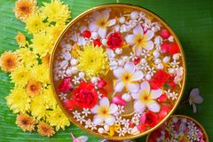 Colorful flower in water bowls decorating on Banana leaf for Songkran Festival or Thai New Year.  stock image