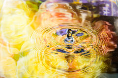 Colorful flower of water reflection and water drop Royalty Free Stock Images
