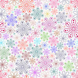 Colorful flower on white  background. Royalty Free Stock Images
