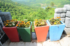 Colorful flowerpot. With mountain background stock photo