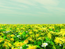 Colorful flowers. Field of colorful flowers. 3d image Stock Photo