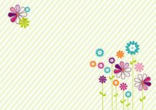 Colorful flowers. On a stripes background Stock Images