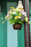 Colorful flowers. In hanging basket Stock Photography