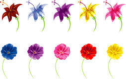 Colorful Flowers. Multicolor vector clipart Stock Photo