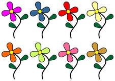 colorful flowers Στοκ φωτογραφία με δικαίωμα ελεύθερης χρήσης