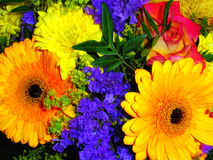 Colorful flowers. Spring bouquet of flowers from chrysanthemum, rose and gerbera Royalty Free Stock Photo