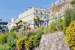 Colorful flowers along the seaside in Eastbourne, United Kingdom. Colorful flowers in front of the buildings along the seaside in Eastbourne, Sussex, United Stock Photos