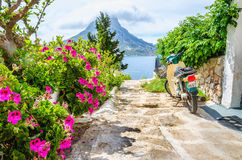 Colorful Flowers And Scooter Parked On Road Greece Stock Images