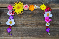 Colorful flowers as frame Royalty Free Stock Images