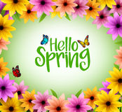 Colorful Flowers Background Frame for Spring Season. In Realistic 3D Vector Illustration with Hello Spring Text Stock Photography