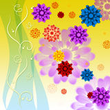Colorful Flowers Background Means Petals Buds Ad Yellow Stock Image