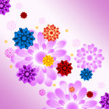 Colorful Flowers Background Means Plants And Gardening Royalty Free Stock Photos