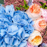 Colorful flowers background Stock Photos
