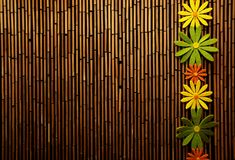 Colorful flowers and bamboo wall Stock Images