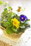 Colorful flowers in basket Royalty Free Stock Photo