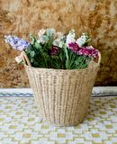 Colorful flowers in a basket. Art decorative in home royalty free stock photos