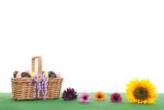 Colorful flowers and basket easter eggs on green grass Stock Image
