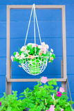 Colorful flowers on the basket. Freshness with Colorful flowers pots stock image