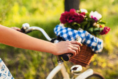Colorful flowers in bicycle basket Royalty Free Stock Image
