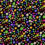 Colorful Flowers on a Black Background Stock Photo