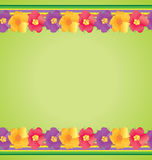Colorful flowers border on green background Stock Photo