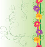 Colorful flowers border on green background Stock Photography