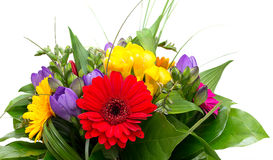 Colorful flowers bouquet isolated Stock Images