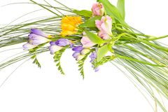 Colorful flowers bouquet isolated on white Royalty Free Stock Photos