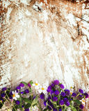 Colorful flowers bouquet on vintage wooden background. Stock Images