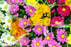 Colorful flowers in bouquets, top view.  royalty free stock images