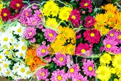 Colorful flowers in bouquets, top view.  stock photo