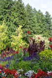 Colorful flowers, Butchart Gardens, Victoria, Canada Royalty Free Stock Image