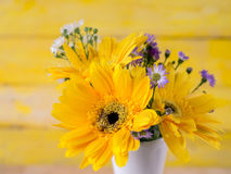 Colorful flowers with colorful backgrounds as well. Royalty Free Stock Image