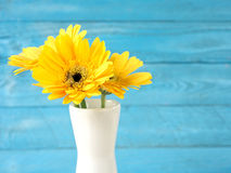 Colorful flowers with colorful backgrounds as well. Stock Image