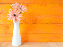Colorful flowers with colorful backgrounds as well. Stock Images