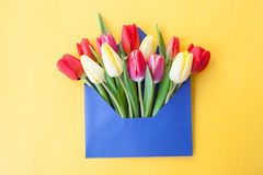 Colorful flowers in envelope Stock Image