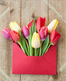 Colorful flowers in envelope Royalty Free Stock Images