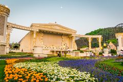 Colorful flowers festival at Everland Theme Park. stock photos