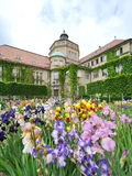 Colorful flowers in front of Botanic Institute of Munich Botanical Garden Stock Photography