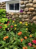 Flowers growing against fieldstone wall. Colorful flowers in garden along old fieldstone wall Stock Image