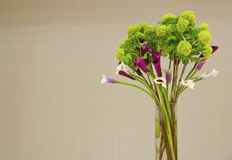 Colorful flowers. In a glass vase Stock Image